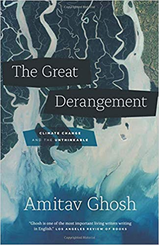 Cover for The Great Derangement