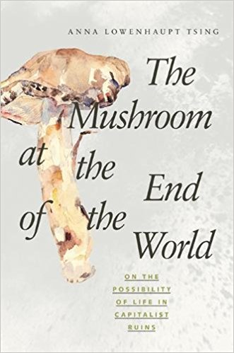 Cover for The Mushroom at the End of the World